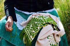 Toppig bergskedja Chincua, Michoacan, Mexico, Januari 14: Den infödda kvinnan syr kläder Royaltyfria Foton
