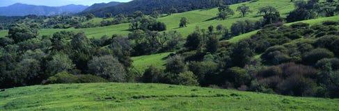 Toppig bergskedja de Salinas Berg, Carmel Valley, Kalifornien Fotografering för Bildbyråer
