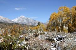 toppig bergskedja för färgfallberg royaltyfri bild