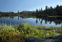 toppig bergskedja för lakenevada reflexion Arkivbild