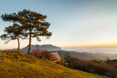 Toppig bergskedja i morgon Royaltyfria Foton