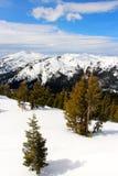 Toppig bergskedja på Tahoe sjukt glesbygdsområde som ser in mot Lake Tahoe Kalifornien Arkivbild