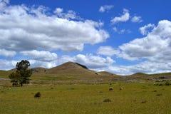 Toppiga bergskedjor y-colinas Royaltyfri Bild