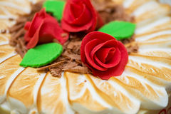 Topping of cake Royalty Free Stock Photography