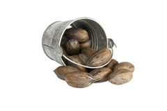 Toppled Galvanized Bucket Spilling Unshelled Pecan Nuts Stock Photo