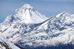 Toppmöte av Dhaulagiri, Annapurna strömkrets, mustang, Nepal Royaltyfria Foton