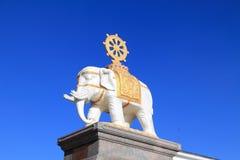toppmöte för montering för porslinemei guld- Royaltyfri Fotografi