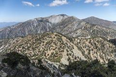 Toppmöte för Mt Baldy i Los Angeles County Kalifornien Fotografering för Bildbyråer