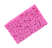 Toppna absorberande rosa färger för svamp Royaltyfri Bild