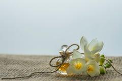 Toppna hälsningar för de älskade flickablommorna och en souvenir eller en överraskning Arkivfoton