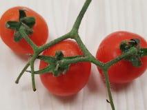 Toppna smakliga tomater royaltyfria bilder