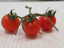 Toppna smakliga tomater Arkivfoto