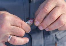 Toppositie op het aas in de handen die wordt gevangen van royalty-vrije stock foto