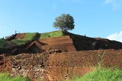 Topruïnes Sigiriya, Sri Lanka Royalty-vrije Stock Afbeelding