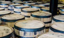 Tops of Bourbon Barrels. Bourbon barrels lined up and ready for storage Royalty Free Stock Photo