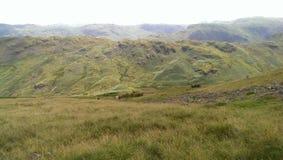 Tops de la colina Foto de archivo libre de regalías