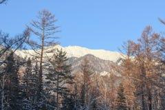 Tops de la nieve de montañas Imagen de archivo