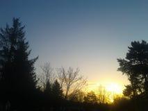 Tops de la puesta del sol y del árbol Fotos de archivo libres de regalías