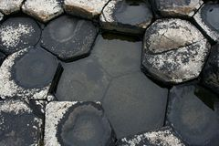 Tops of grey basaltic prisms with water in Ireland. Tops of grey basaltic prisms with water the Giant's Causeway in Northern Ireland stock photography