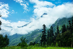 The tops of the mountains. Dombay, Royalty Free Stock Image