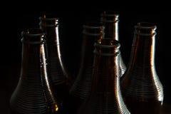 Tops of six dark brown bottles. Half length of six dark brown bottles over black background Royalty Free Stock Photo
