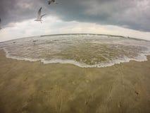 Topsail beach north carolina. Dark clouds Royalty Free Stock Photography