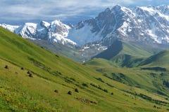 TopShhara in de Kaukasus Royalty-vrije Stock Afbeeldingen