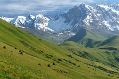 TopShhara w Kaukaz Obrazy Royalty Free
