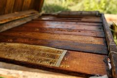 Topside of closed wooden beehive. Collect honey. Beekeeping concept.  stock images