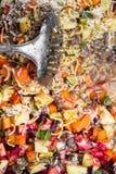 Topview, aliments pour chiens selfmade WI à la maison, de légumes, de riz et de viande Image stock
