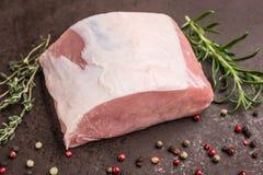 Topview auf roher iberico Schweinelende Lizenzfreies Stockfoto