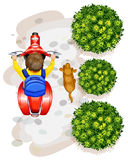 A topview of a boy riding a motorcyle Stock Photo