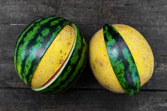 Topview canary and watermelon Royalty Free Stock Photography