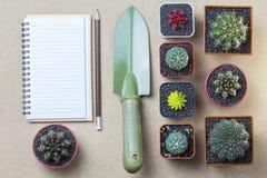 Topview della matita del taccuino e del cactus dello showel sulla tavola marrone Fotografie Stock