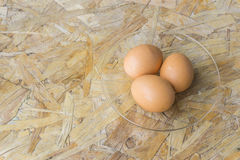 Topview eggs on a dish Stock Images