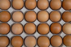 Topview eggs in crate stock image