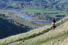 Topview i Nya Zeeland royaltyfria foton