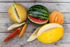 Topview på många melon royaltyfri foto
