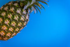 Topview of pineapple with desktop on plates blue background. top Stock Photos
