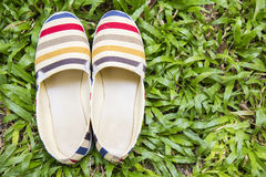 Topview of traveller's sneaker on lawn with copyspace. Royalty Free Stock Photography