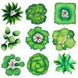 Topview van bladeren stock illustratie