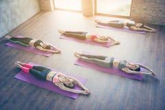 Topview von fünf jungen dünnen Yogadamen, ihr ganzes b ausdehnend Stockbilder