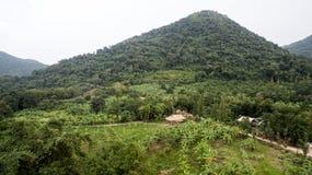 Topview wild Stockbild
