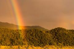 Toque do arco-íris das cores em um dia nebuloso que quebra com imagem de stock royalty free