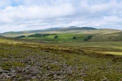 Tor de Belstone en Dartmoor imágenes de archivo libres de regalías