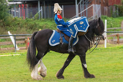 Tor the Drumhorse passing by at the arena Royalty Free Stock Photography