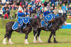 Tor and Oden the Drum horses at the The Mounted Guard event Royalty Free Stock Photos