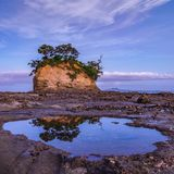 The Tor, Torbay. The Tor at sunset on Auckland`s North Shore Royalty Free Stock Images
