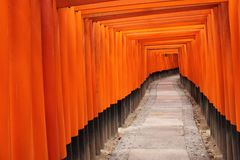 Tora of Fushimi Inari Taisha Shrine Stock Photography
