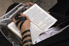 Torah Reading. A man reads from the Torah at the Wailing Wall in Jerusalem Stock Image